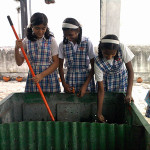 Preparation of manure from biodegradable wastes